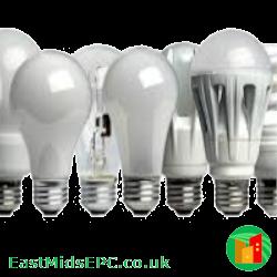 A variety of light bulbs